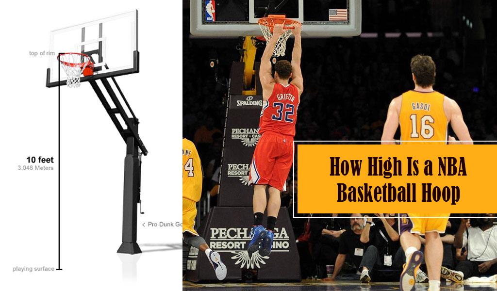 How High Is a Basketball Hoop